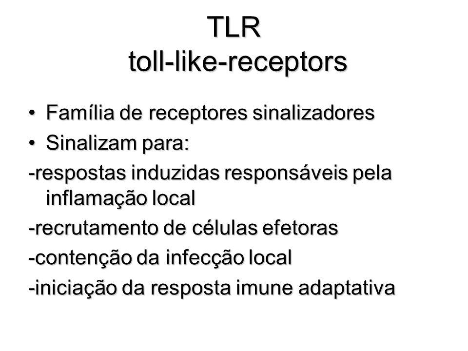 TLR toll-like-receptors Família de receptores sinalizadoresFamília de receptores sinalizadores Sinalizam para:Sinalizam para: -respostas induzidas res