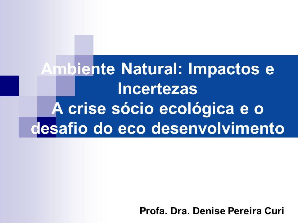 Ambiente Natural: Impactos e Incertezas A crise sócio ecológica e o desafio do eco desenvolvimento Profa. Dra. Denise Pereira Curi