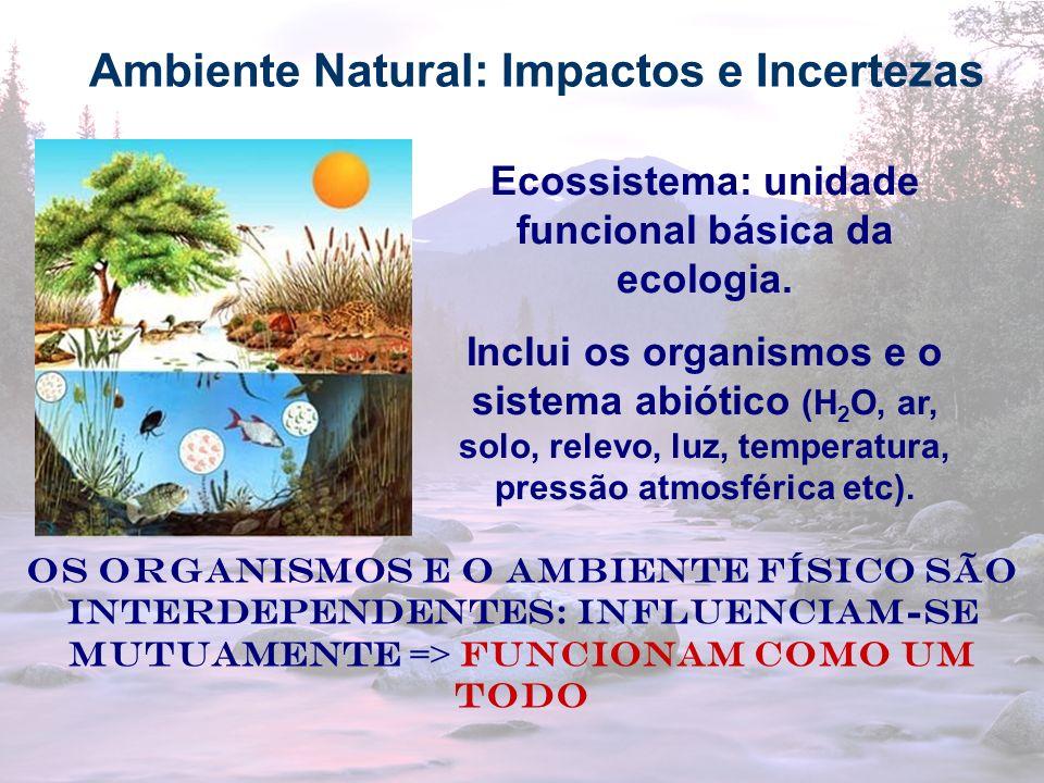12 Ambiente Natural: Impactos e Incertezas Ecossistema: unidade funcional básica da ecologia. Inclui os organismos e o sistema abiótico (H 2 O, ar, so