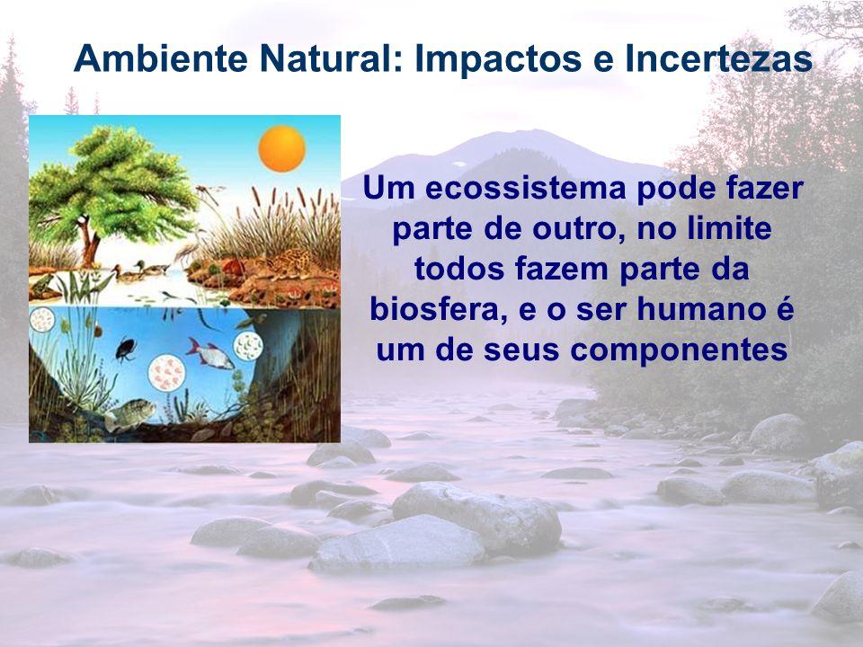 13 Ambiente Natural: Impactos e Incertezas Um ecossistema pode fazer parte de outro, no limite todos fazem parte da biosfera, e o ser humano é um de s