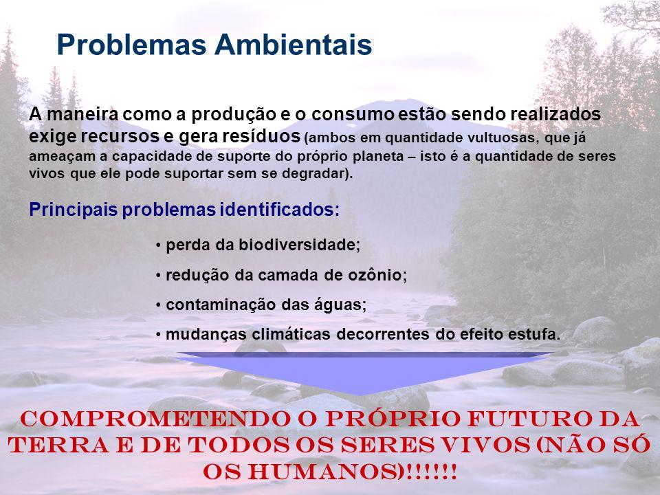 16 Problemas Ambientais A maneira como a produção e o consumo estão sendo realizados exige recursos e gera resíduos (ambos em quantidade vultuosas, qu