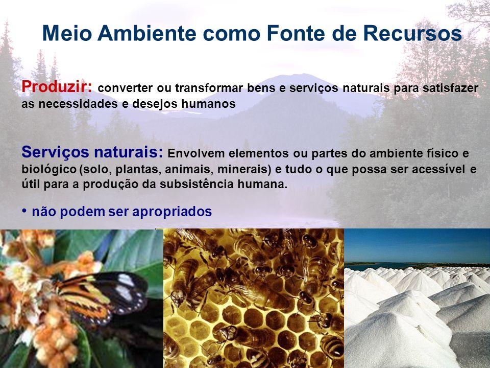 17 Meio Ambiente como Fonte de Recursos Produzir: converter ou transformar bens e serviços naturais para satisfazer as necessidades e desejos humanos