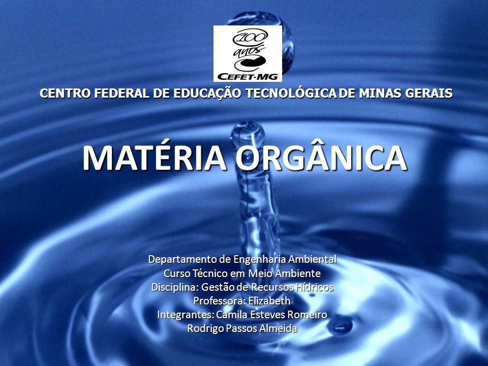 MATÉRIA ORGÂNICA Departamento de Engenharia Ambiental Curso Técnico em Meio Ambiente Disciplina: Gestão de Recursos Hídricos Professora: Elizabeth Int