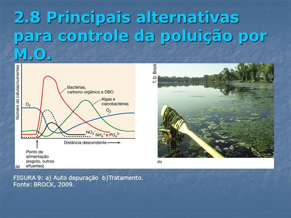 FIGURA 9: a) Auto depuração b)Tratamento. Fonte: BROCK, 2009. 2.8 Principais alternativas para controle da poluição por M.O.