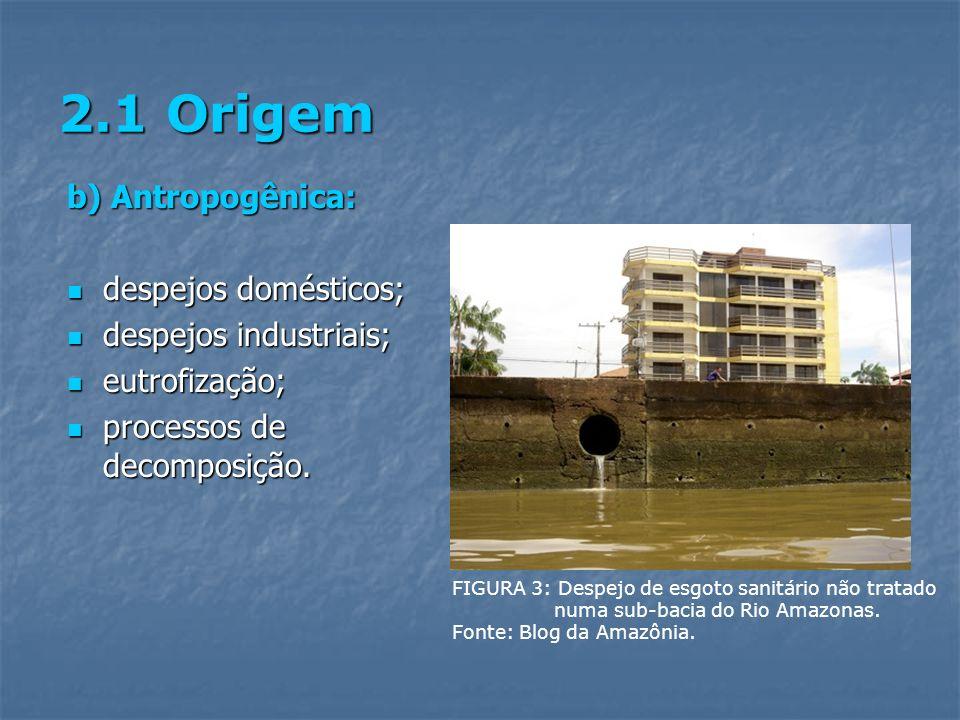 2.1 Origem b) Antropogênica: despejos domésticos; despejos domésticos; despejos industriais; despejos industriais; eutrofização; eutrofização; process
