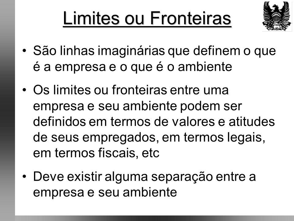 Limites ou Fronteiras São linhas imaginárias que definem o que é a empresa e o que é o ambiente Os limites ou fronteiras entre uma empresa e seu ambiente podem ser definidos em termos de valores e atitudes de seus empregados, em termos legais, em termos fiscais, etc Deve existir alguma separação entre a empresa e seu ambiente