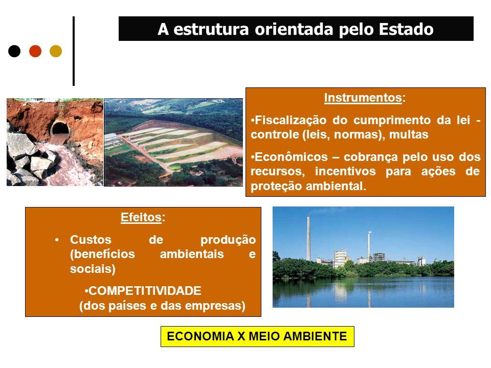 Efeitos: Custos de produção (benefícios ambientais e sociais) COMPETITIVIDADE (dos países e das empresas) Instrumentos: Fiscalização do cumprimento da