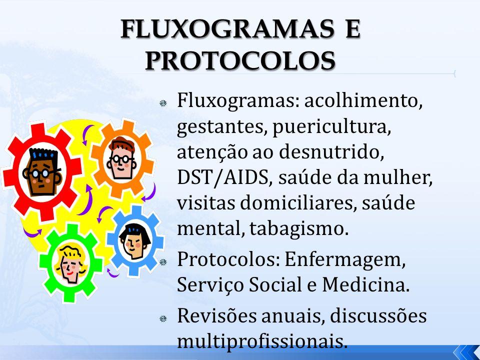 Fluxogramas: acolhimento, gestantes, puericultura, atenção ao desnutrido, DST/AIDS, saúde da mulher, visitas domiciliares, saúde mental, tabagismo. Pr