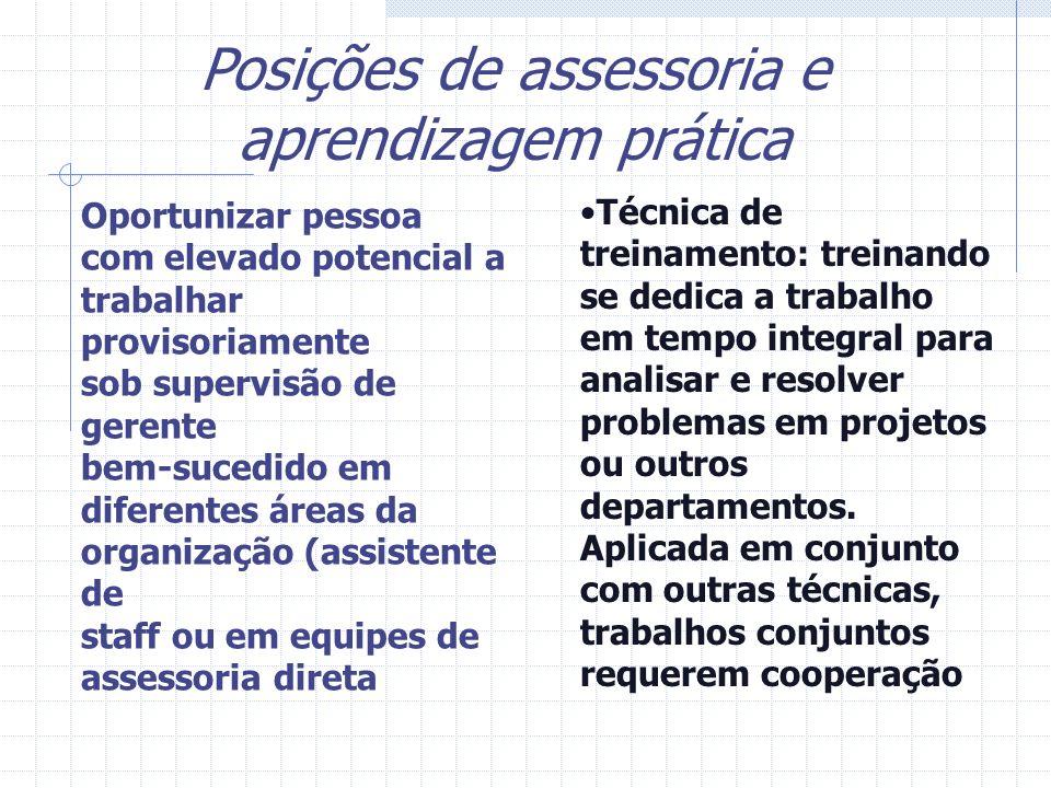 Técnica de treinamento: treinando se dedica a trabalho em tempo integral para analisar e resolver problemas em projetos ou outros departamentos. Aplic