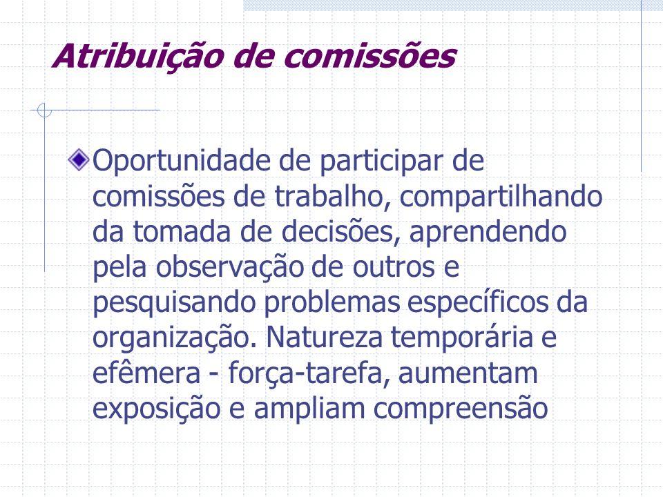Atribuição de comissões Oportunidade de participar de comissões de trabalho, compartilhando da tomada de decisões, aprendendo pela observação de outro