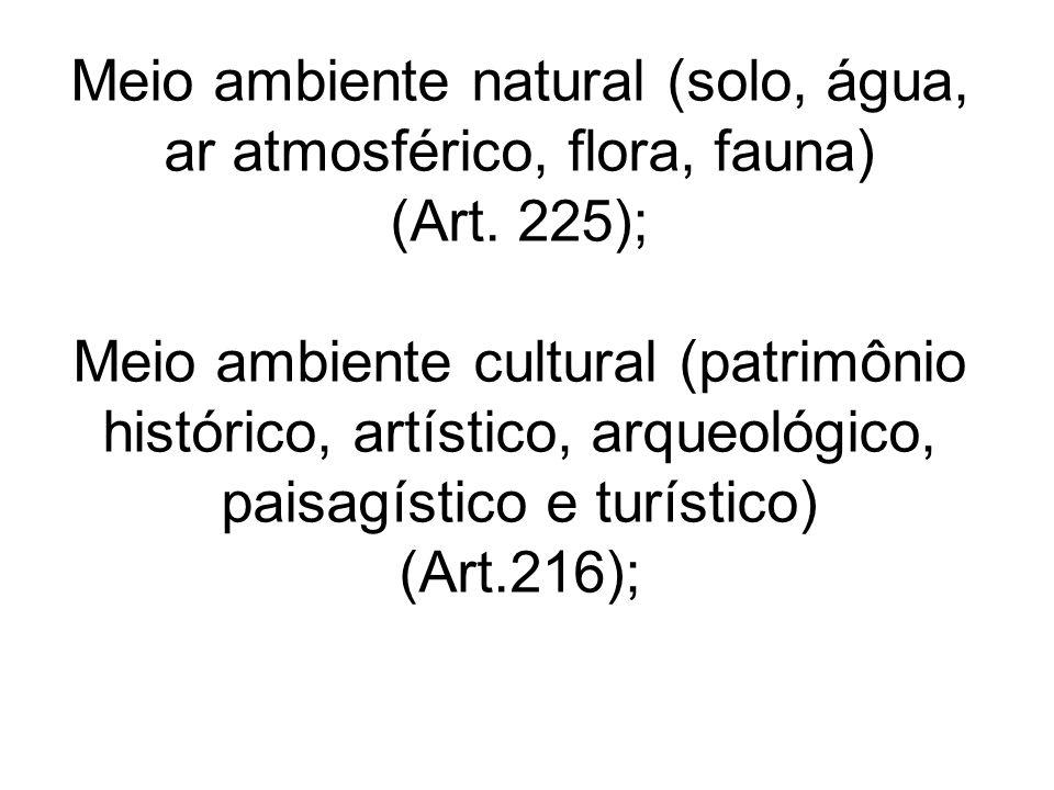 Meio ambiente natural (solo, água, ar atmosférico, flora, fauna) (Art. 225); Meio ambiente cultural (patrimônio histórico, artístico, arqueológico, pa