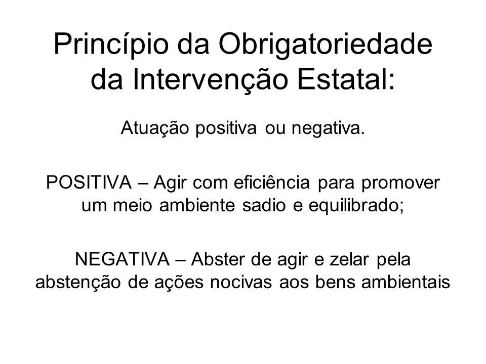 Princípio da Obrigatoriedade da Intervenção Estatal: Atuação positiva ou negativa. POSITIVA – Agir com eficiência para promover um meio ambiente sadio