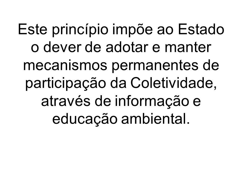 Este princípio impõe ao Estado o dever de adotar e manter mecanismos permanentes de participação da Coletividade, através de informação e educação amb