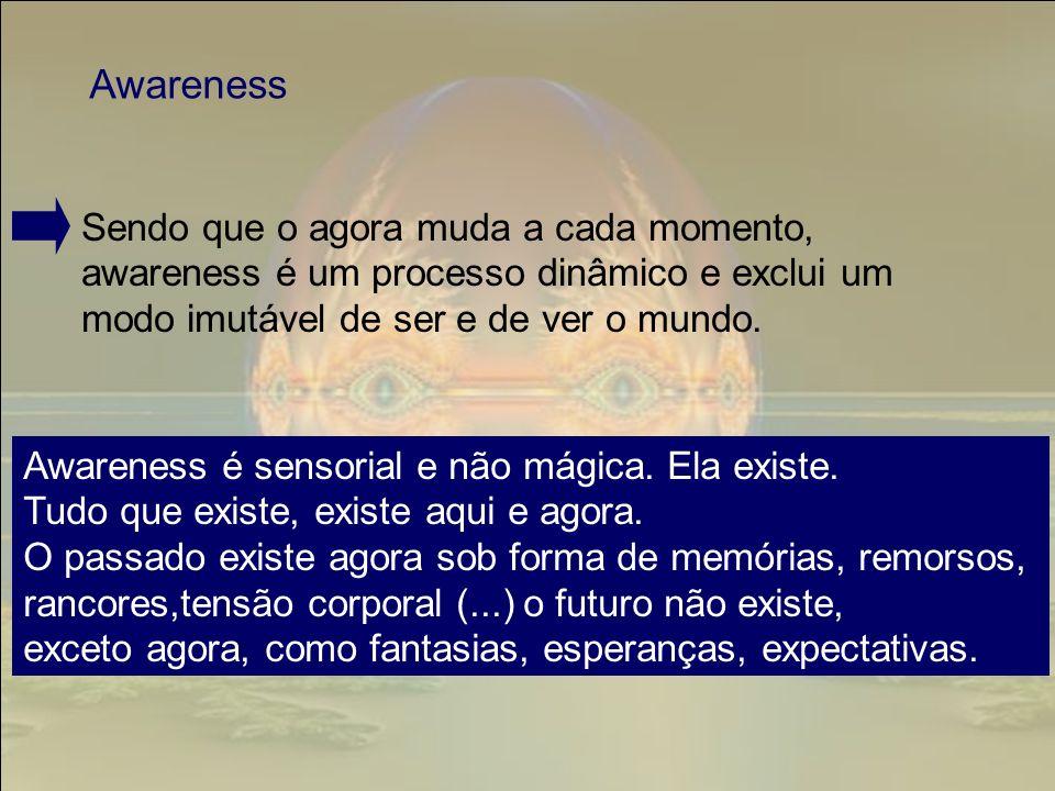 Sendo que o agora muda a cada momento, awareness é um processo dinâmico e exclui um modo imutável de ser e de ver o mundo. Awareness Awareness é senso