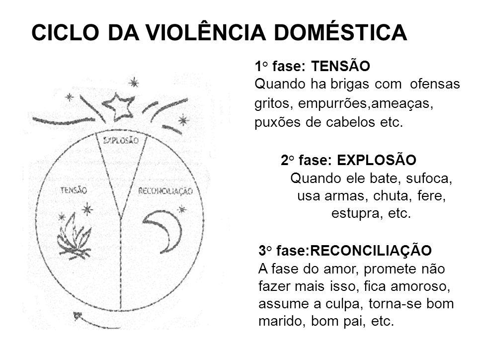 CICLO DA VIOLÊNCIA DOMÉSTICA 1° fase: TENSÃO Quando ha brigas com ofensas gritos, empurrões,ameaças, puxões de cabelos etc. 2° fase: EXPLOSÃO Quando e