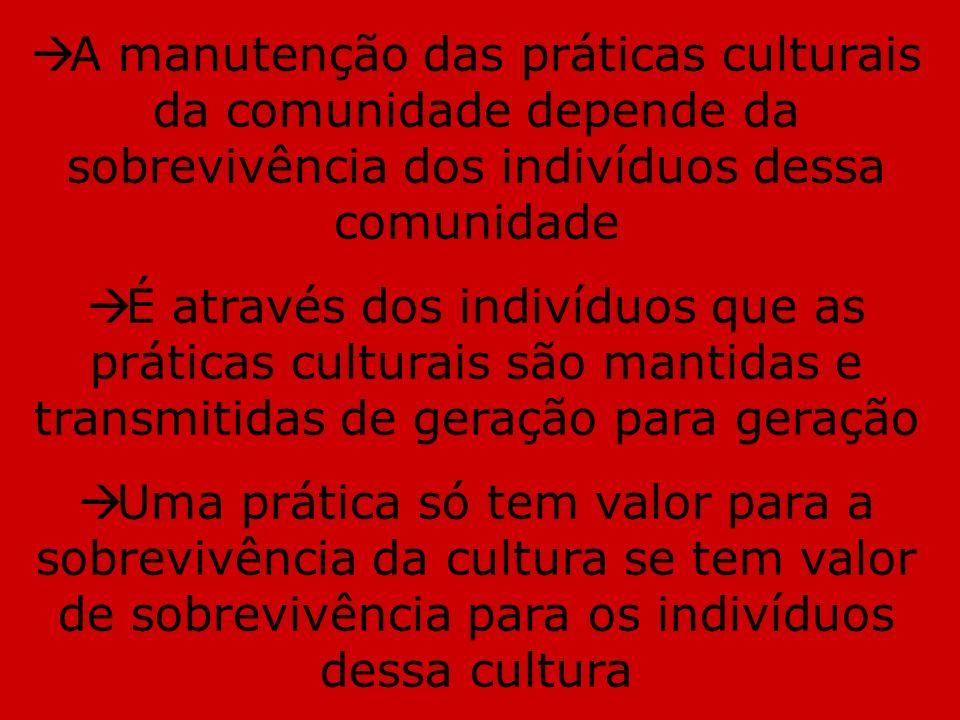 A manutenção das práticas culturais da comunidade depende da sobrevivência dos indivíduos dessa comunidade É através dos indivíduos que as práticas cu