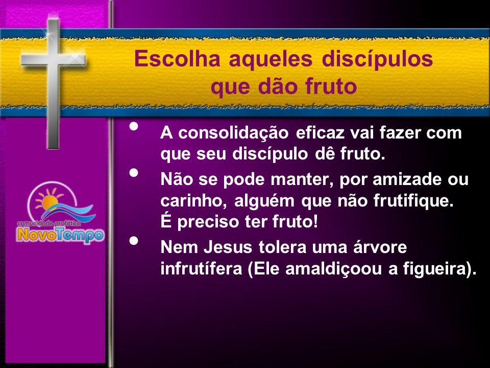 Princípios de uma Consolidação Correta 1.