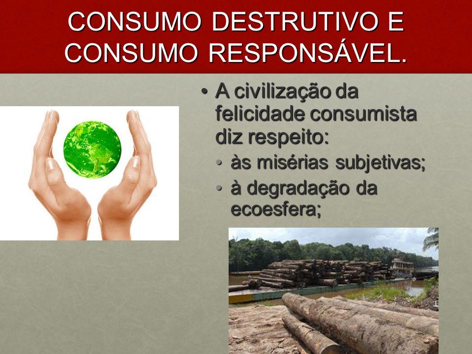 CONSUMO DESTRUTIVO E CONSUMO RESPONSÁVEL. A civilização da felicidade consumista diz respeito: A civilização da felicidade consumista diz respeito: às