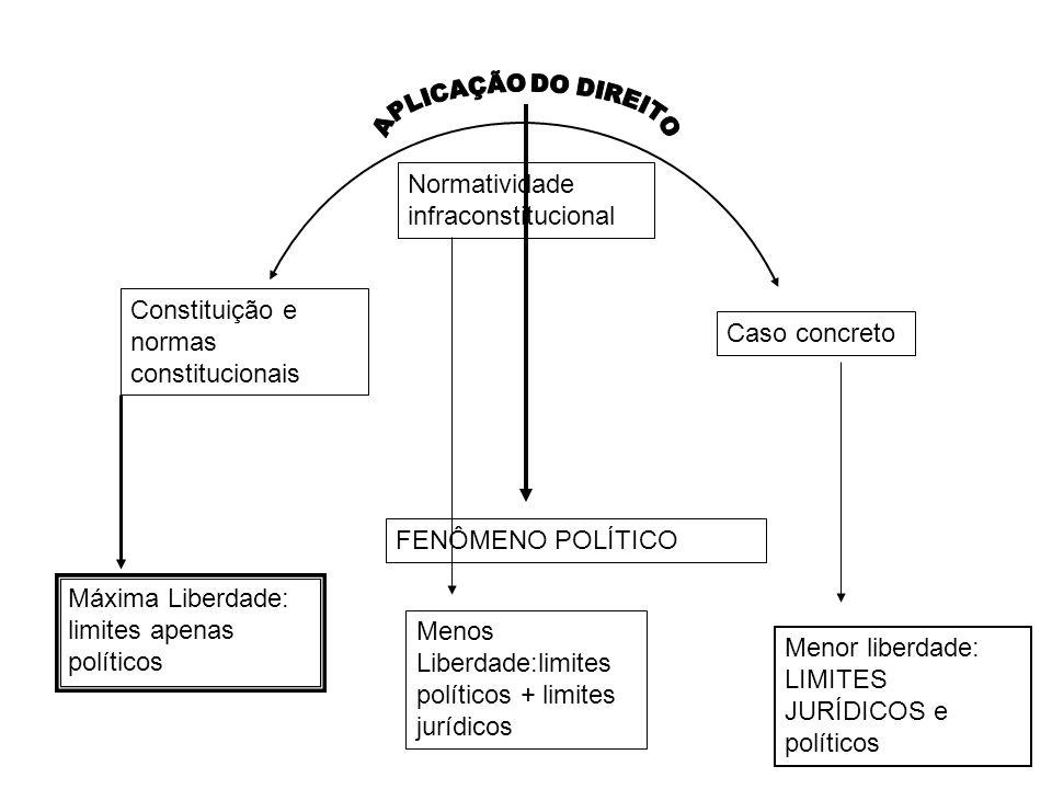 Caso concreto Constituição e normas constitucionais Normatividade infraconstitucional FENÔMENO POLÍTICO Máxima Liberdade: limites apenas políticos Men