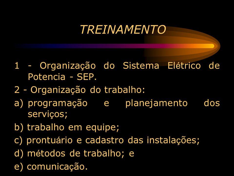 TREINAMENTO 1 - Organiza ç ão do Sistema El é trico de Potencia - SEP. 2 - Organiza ç ão do trabalho: a)programa ç ão e planejamento dos servi ç os; b