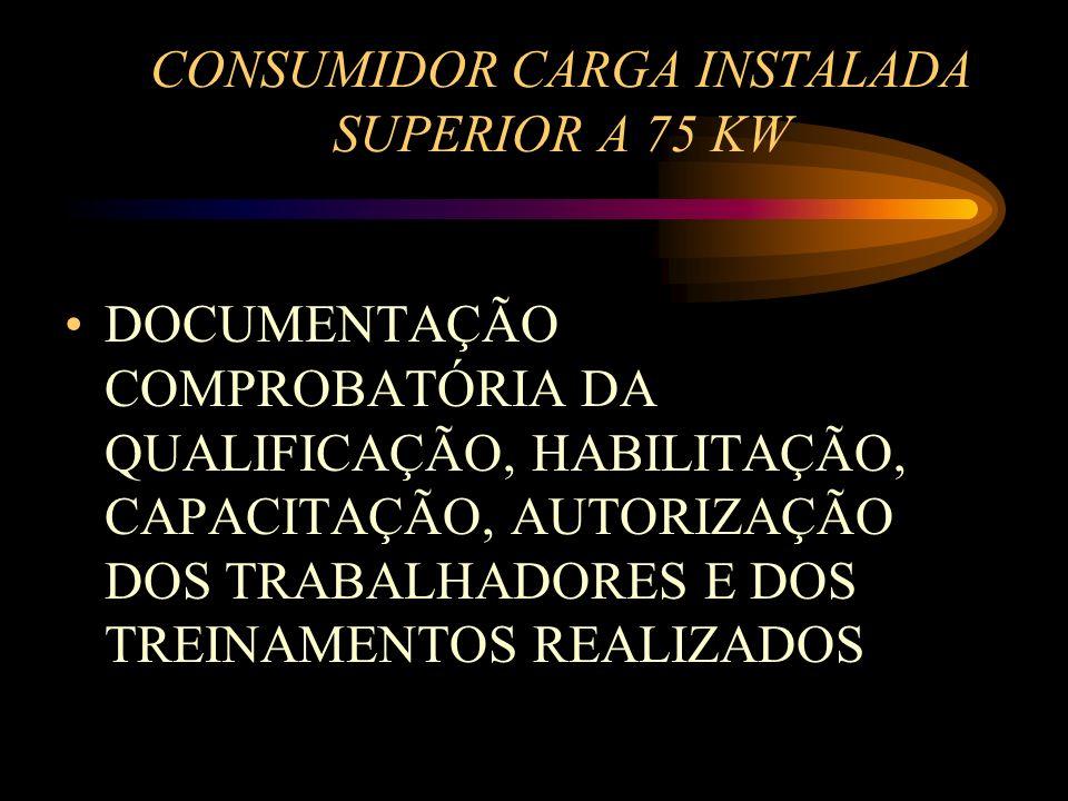 CONSUMIDOR CARGA INSTALADA SUPERIOR A 75 KW DOCUMENTAÇÃO COMPROBATÓRIA DA QUALIFICAÇÃO, HABILITAÇÃO, CAPACITAÇÃO, AUTORIZAÇÃO DOS TRABALHADORES E DOS