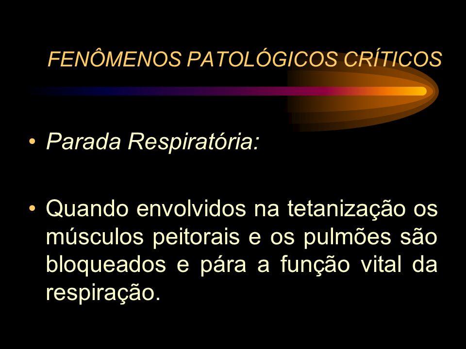 FENÔMENOS PATOLÓGICOS CRÍTICOS Parada Respiratória: Quando envolvidos na tetanização os músculos peitorais e os pulmões são bloqueados e pára a função