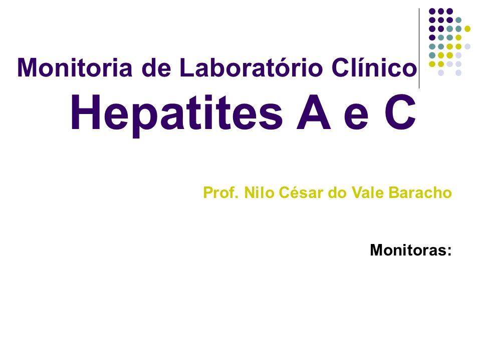 Prof. Nilo César do Vale Baracho Monitoras: Monitoria de Laboratório Clínico Hepatites A e C