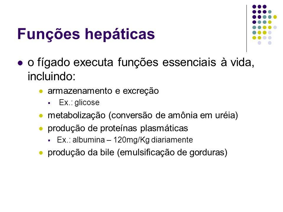 Epidemiologia estima-se que cerca de 3% da população mundial (170 milhões de pessoas) seja portada de hepatite C crônica é a mais comum infecção transportada pelo sangue EUA: 40 mil novos casos por ano Brasil: em doadores de sangue, a incidência da hepatite C é de cerca de 1,2% atualmente, é a principal causa de transplante hepático em países desenvolvidos responsável por 60% dos casos de hepatopatias crônicas