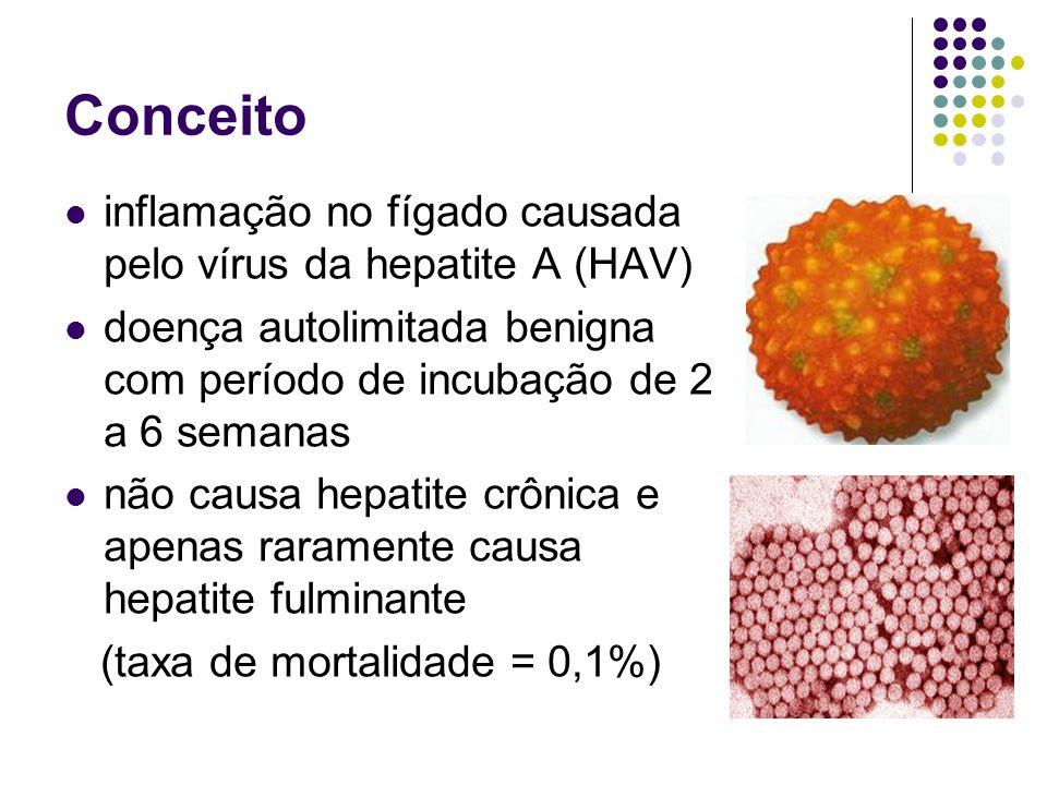 Epidemiologia o HAV ocorre em todo o mundo e é endêmico em países com higiene e saneamento abaixo dos padrões a infecção é comum em crianças (2 a 6 anos) nos países desenvolvidos: 50% da população acima de 50 anos é soropositivo o HAV é responsável por 25% dos casos de hepatite aguda EUA: 270.000 novos casos por ano Brasil (risco de infecção) populações mais pobres = 95% populações das classes média e alta = 20%