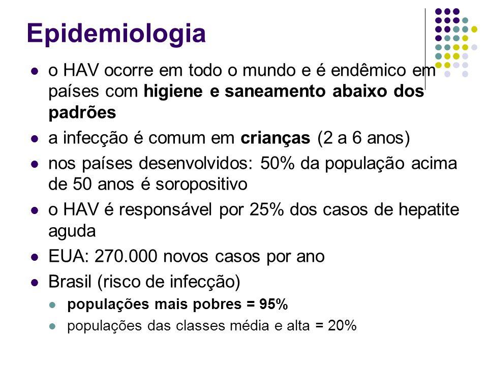 Epidemiologia o HAV ocorre em todo o mundo e é endêmico em países com higiene e saneamento abaixo dos padrões a infecção é comum em crianças (2 a 6 an