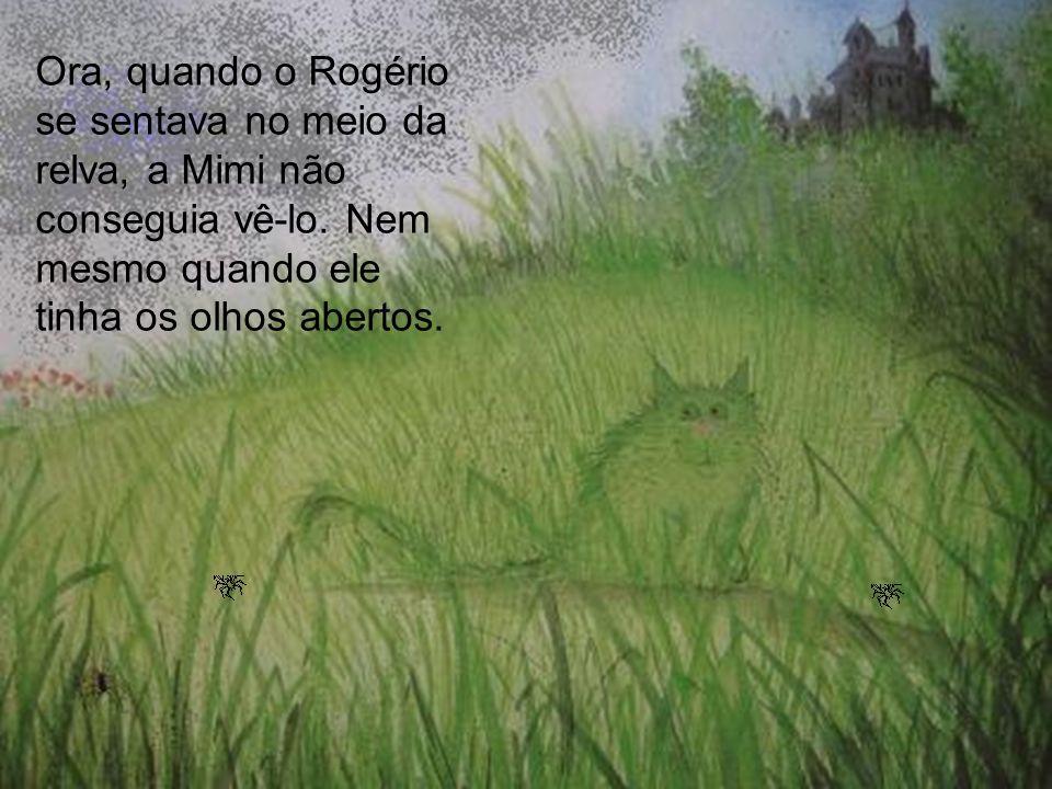 Ora, quando o Rogério se sentava no meio da relva, a Mimi não conseguia vê-lo. Nem mesmo quando ele tinha os olhos abertos.