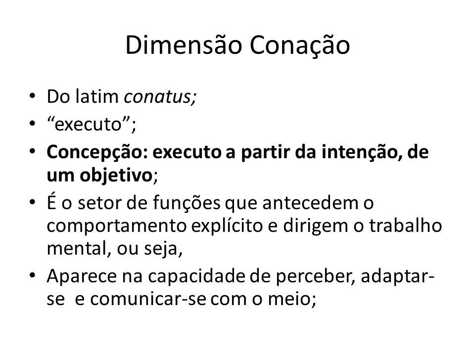 Dimensão Conação Do latim conatus; executo; Concepção: executo a partir da intenção, de um objetivo; É o setor de funções que antecedem o comportament