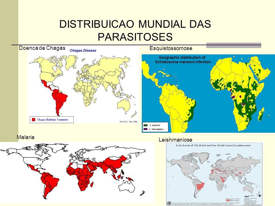 DISTRIBUICAO MUNDIAL DAS PARASITOSES Doenca de Chagas Malaria Esquistossomose Leishmaniose