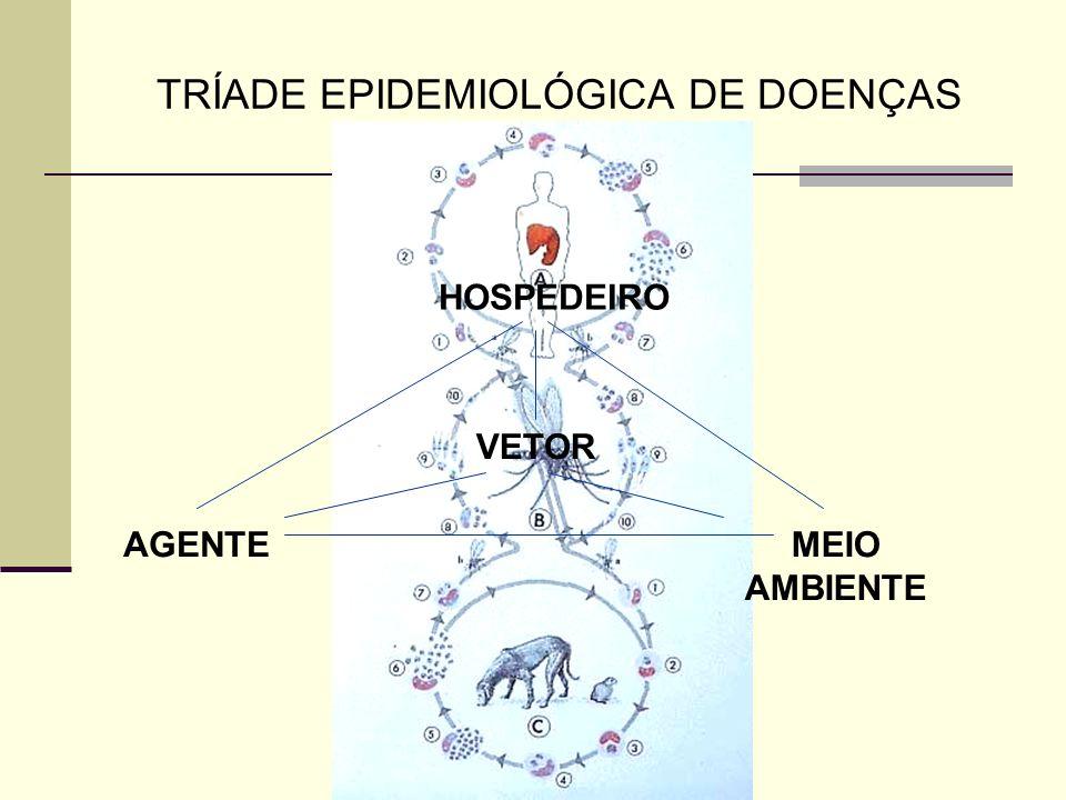 AGENTE HOSPEDEIRO MEIO AMBIENTE VETOR FATORES RELACIONADOS AOS COMPONENTES DESSE COMPLEXO SISTEMA DE INTERAÇÕES - Suscetibilidade / Resistência: fatores genéticos; estado nutricional; idade; sexo; status imunológico.