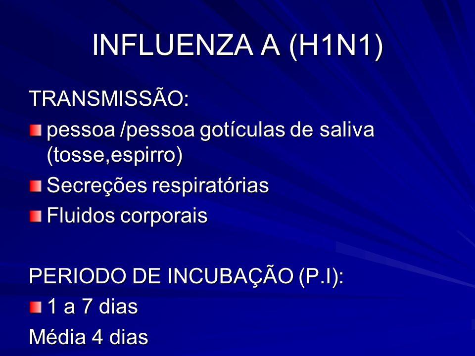 INFLUENZA A (H1N1) TRANSMISSÃO: pessoa /pessoa gotículas de saliva (tosse,espirro) Secreções respiratórias Fluidos corporais PERIODO DE INCUBAÇÃO (P.I