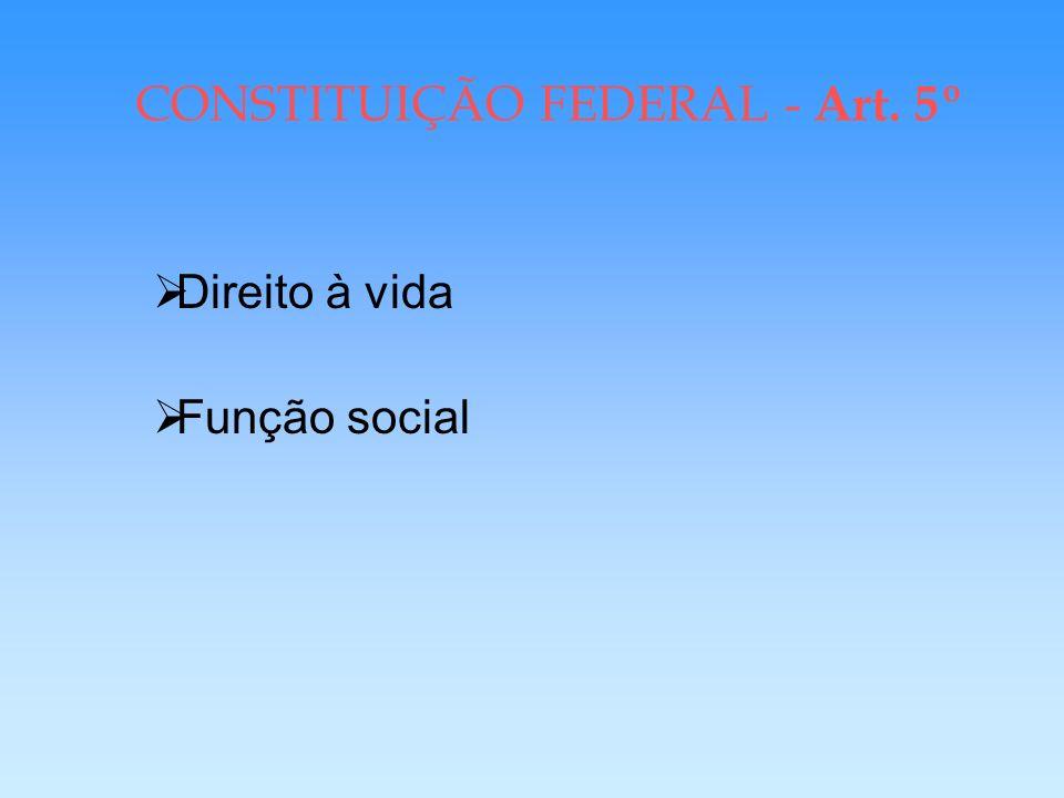 CONSTITUIÇÃO FEDERAL DE 1988 Protege Direitos Sociais > 1946; 1967; 1969