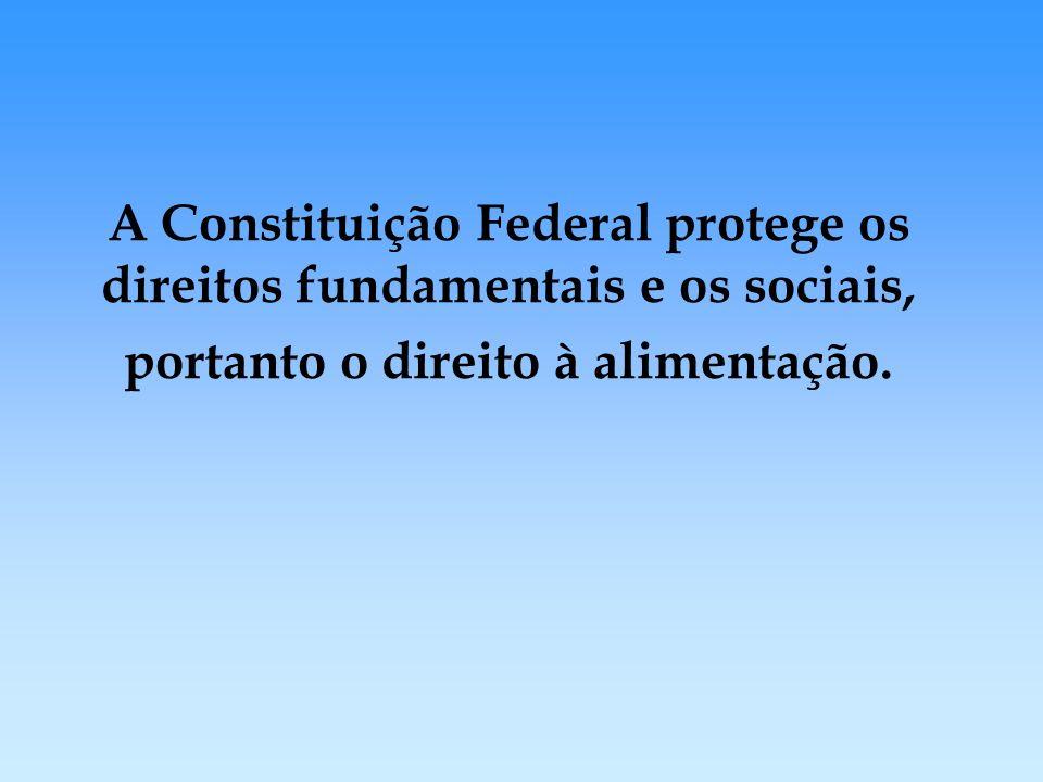 PAT: Política Pública de redistribuição de renda direcionada à alimentação.