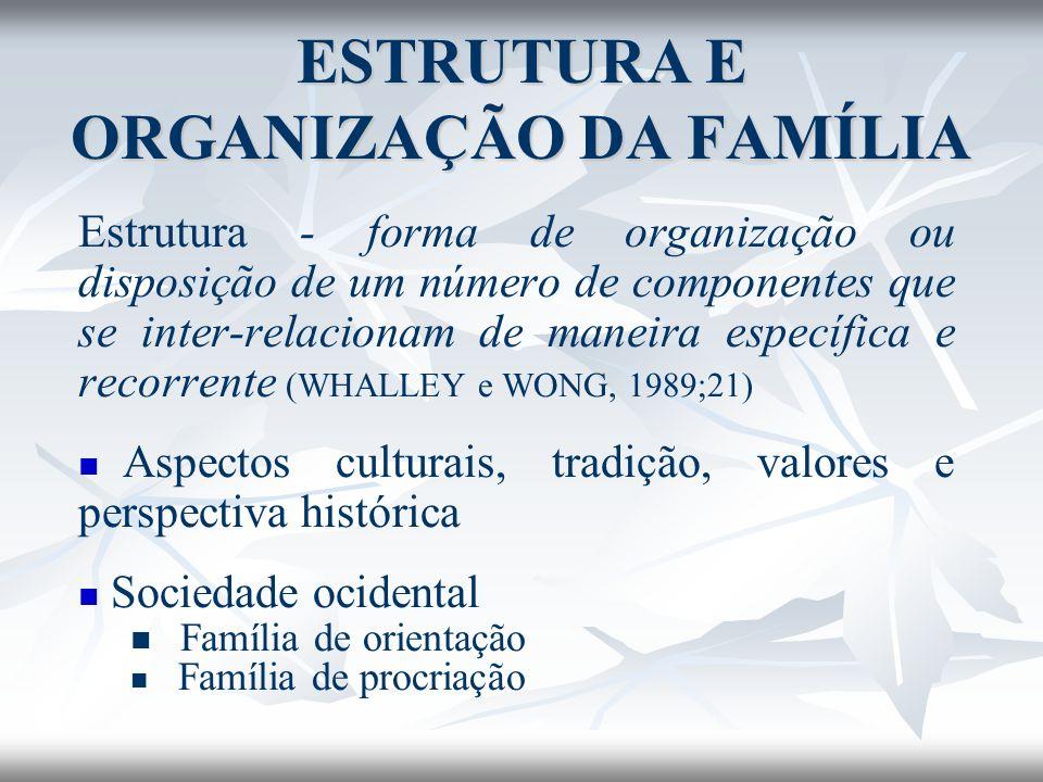 Estrutura - forma de organização ou disposição de um número de componentes que se inter-relacionam de maneira específica e recorrente (WHALLEY e WONG,