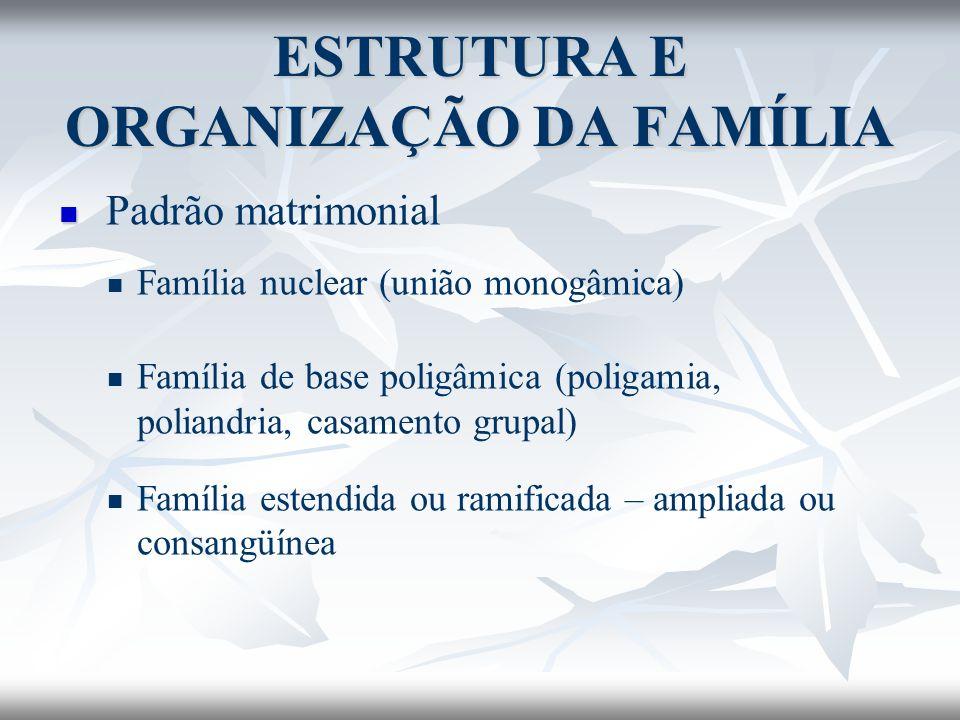 Padrão matrimonial Família nuclear (união monogâmica) Família de base poligâmica (poligamia, poliandria, casamento grupal) Família estendida ou ramifi