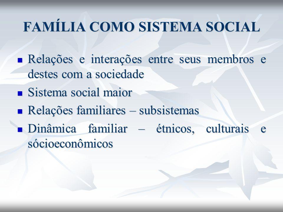 FAMÍLIA COMO SISTEMA SOCIAL A ação das famílias como grupo de convivência é marcada por uma dinâmica intensa que demanda de seus integrantes um constante exercício de repensar o presente e o futuro, o que os leva a reorganizarem continuamente suas estratégias (ROMANELLI, 2000: 76).