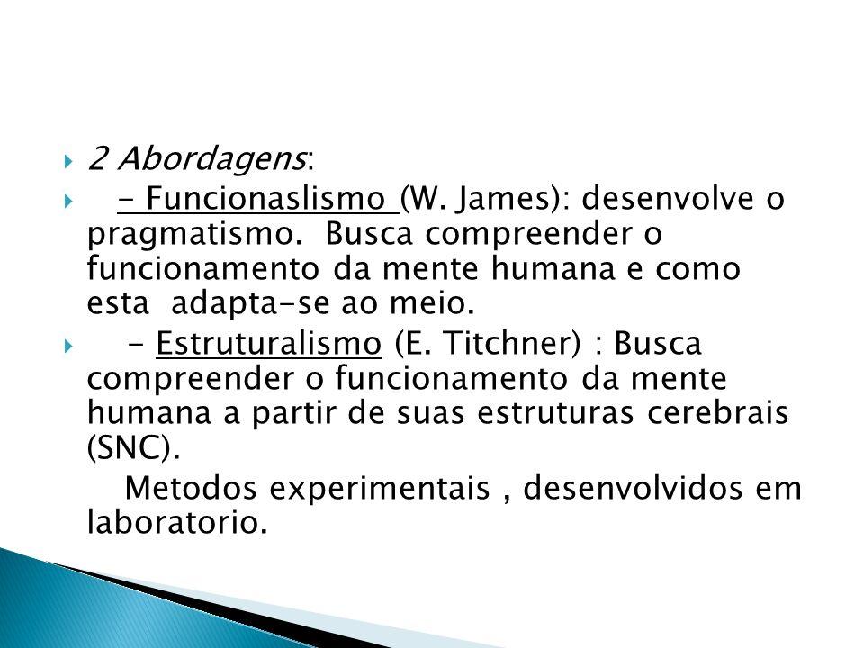 Principais teorias: do seculo XIX - Behaviorismo: comportamento; - Gestalt: Totalidade; - Psicanalise: Inconsciente