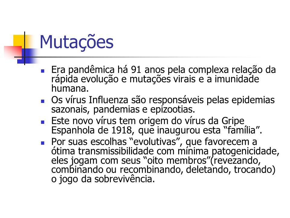 Mutações Era pandêmica há 91 anos pela complexa relação da rápida evolução e mutações virais e a imunidade humana. Os vírus Influenza são responsáveis