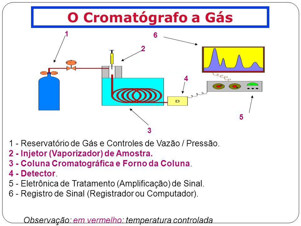 INSTRUMENTAÇÃO Gás de Arraste GÁS DE ARRASTE Fase Móvel em CG: NÃO interage com a amostra - apenas a carrega através da coluna.