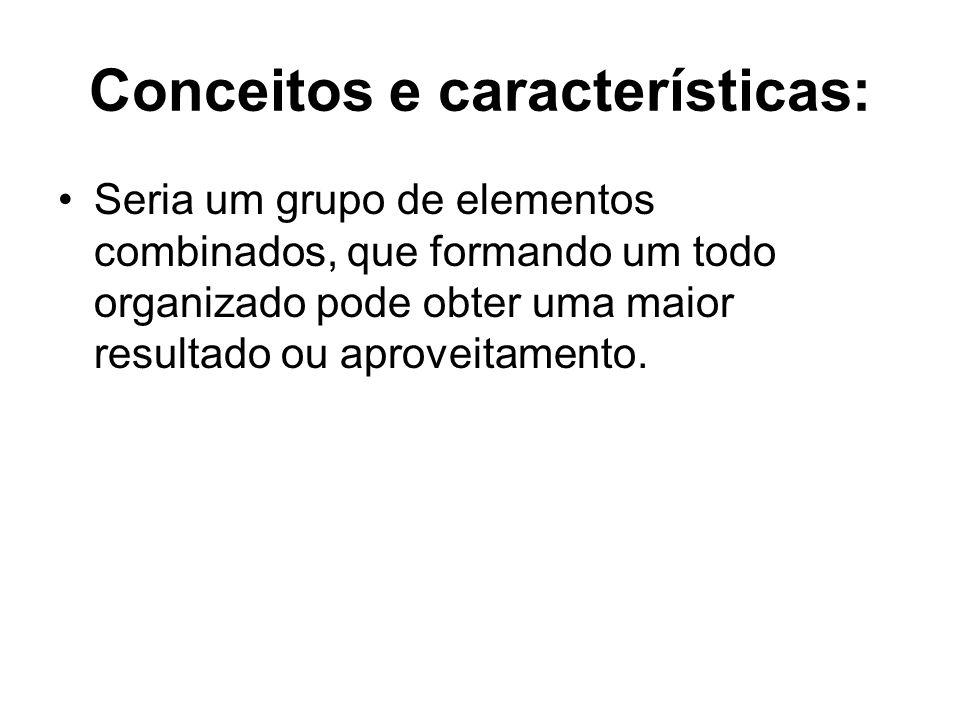 Conceitos e características: Seria um grupo de elementos combinados, que formando um todo organizado pode obter uma maior resultado ou aproveitamento.