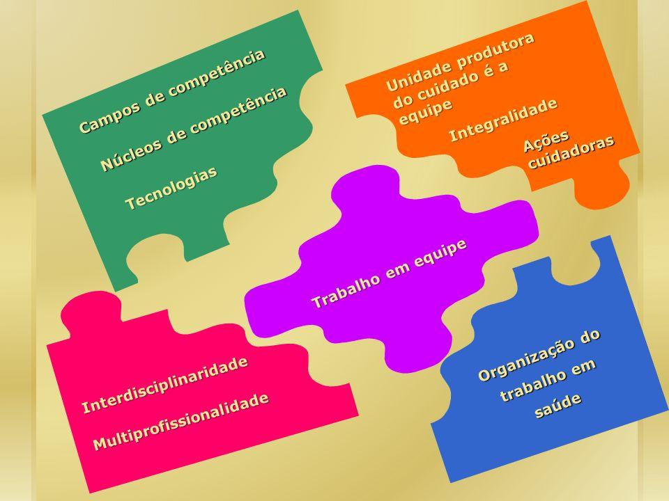 Organização do trabalho em saúde Trabalho em equipe Campos de competência Tecnologias Interdisciplinaridade Multiprofissionalidade Integralidade Ações
