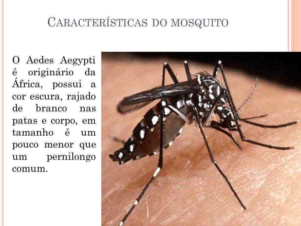 C ARACTERÍSTICAS DO MOSQUITO O Aedes Aegypti é originário da África, possui a cor escura, rajado de branco nas patas e corpo, em tamanho é um pouco me