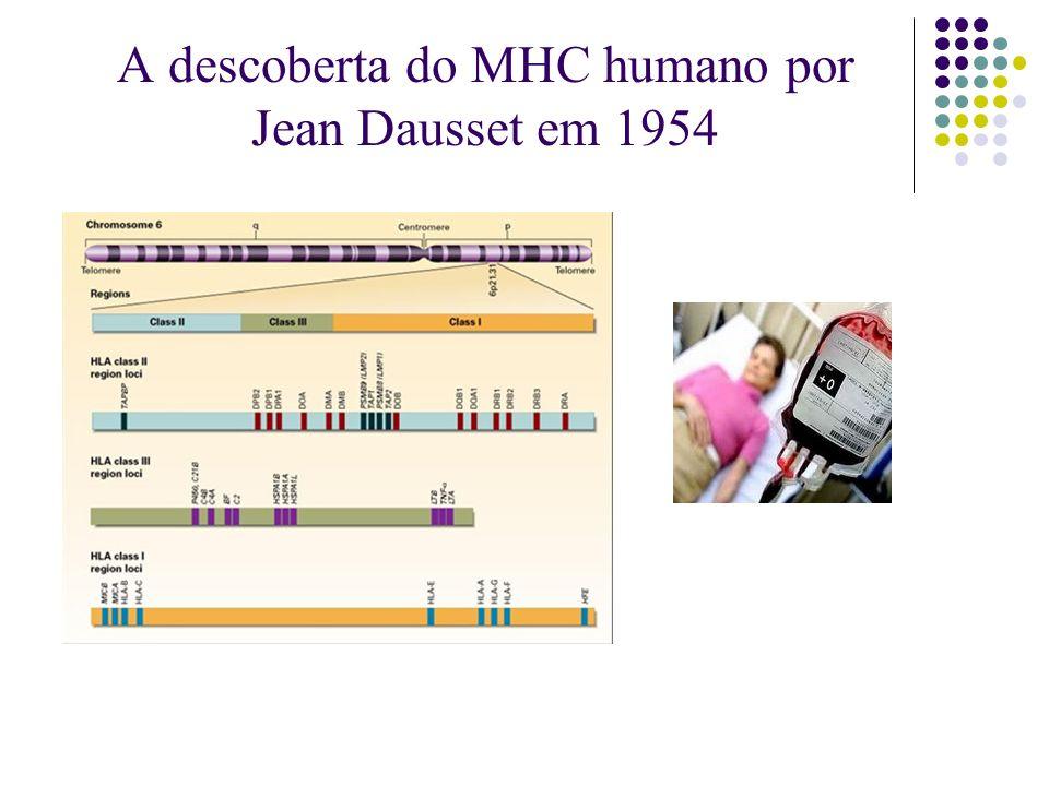 A descoberta do MHC humano por Jean Dausset em 1954