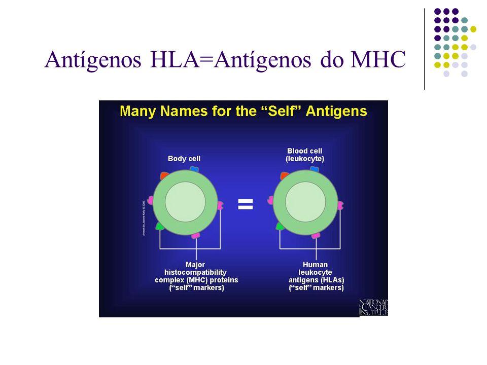 Antígenos HLA=Antígenos do MHC