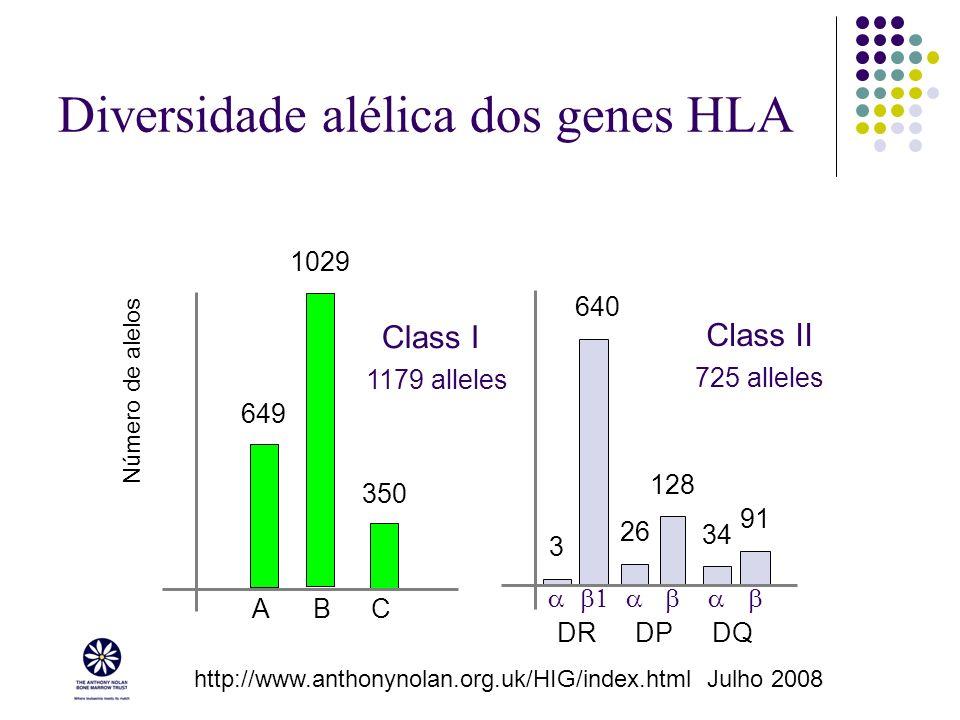 Diversidade alélica dos genes HLA 3 640 26 128 34 91 DRDPDQ Class II 1029 649 350 ABC Número de alelos Class I http://www.anthonynolan.org.uk/HIG/inde