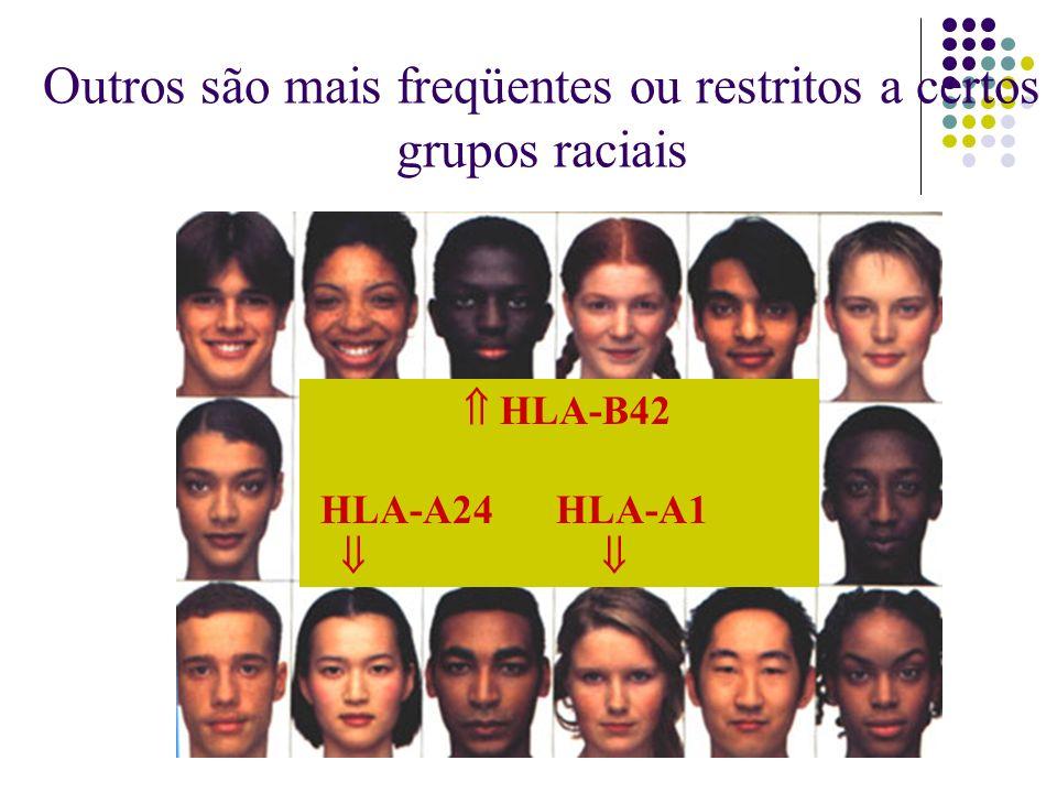 HLA-B42 HLA-A24 HLA-A1 Outros são mais freqüentes ou restritos a certos grupos raciais